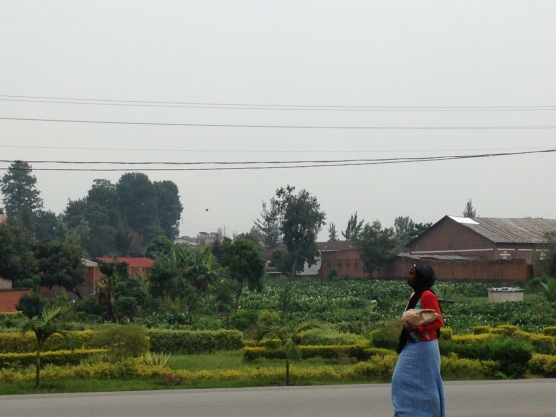 Rwanda är extremt bördigt, vilket syns precis överallt